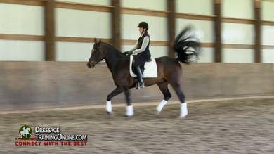 Laura Graves starts out making sure that he is thinking forward at all times. - Part 1 by Dressage Today Online