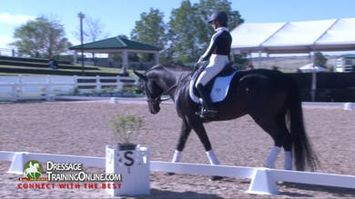 Steffen Peters watches this pair warm up at the walk and explains what he is looking for as he watches a new horse. - Part 1 by Dressage Today Online