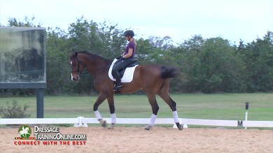 Chrissa goes back to elementary school to find the relaxation needed for them to ride his body correctly while they rebuild his muscle and weight. - Part 1 by Dressage Today Online