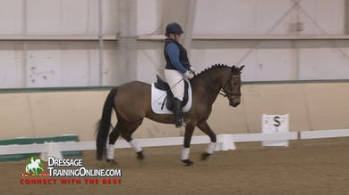 Lars Petersen greets this rider and finds her partner is a Mustang mare! - Part 1 by Dressage Today Online