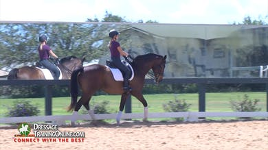 They start the canter work with Chrissa helping her keep him more up in the frame. - Part 2 by Dressage Today Online