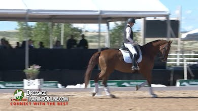 This chestnut mare schooling at Third Level is coming off an injury and starting back to work.  - Part 1 by Dressage Today Online