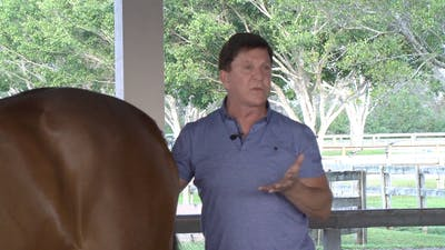 Instant Access to Gene Freeze - Saddle Fitting  - Part Two - Symmetry of the Horse by Dressage Today Online, powered by Intelivideo