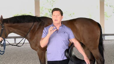 Gene Freeze - Saddle Fitting - Part Seven - Girths by Dressage Today Online