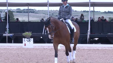 Steffen Peters - Training Level - Part Three by Dressage Today Online