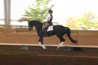 Heather Robertson Day 1, forward and back in the canter by Dressage Today Online