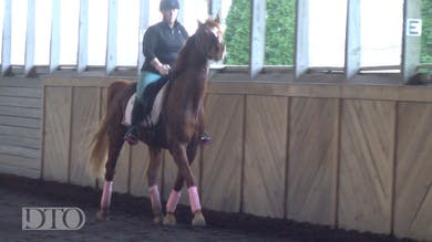 Kasey Perry-Glass - 5 Year Old - Part Two by Dressage Today Online