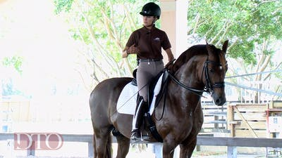 Lisa Wilcox - Training with Ernst Hoyos - Use of Leg Aids by Dressage Today Online