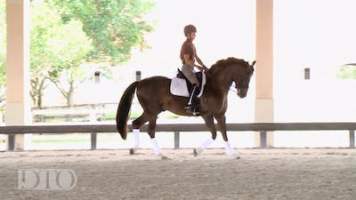 Lisa Wilcox - Training with Ernst Hoyos Part 1 - Warm Up, Trot and Canter Work by Dressage Today Online