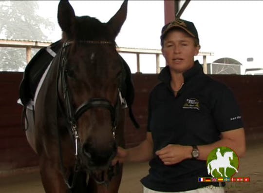 Instant Access to Mental Capacities of The Horse by Dressage Today Online, powered by Intelivideo