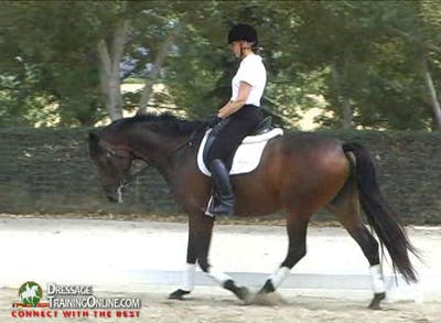Charlotte Bredahl-USA-2nd Level Training Session by Dressage Today Online