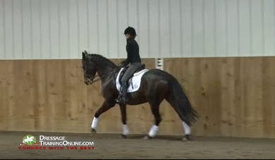 USDF Adult Clinic with Lilo Fore- Riding the Experienced Horse by Dressage Today Online