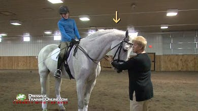 USDF Adult Clinic with Lilo Fore- Learning with the Schoolmaster by Dressage Today Online