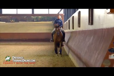 Dr. Ulf Moller - The Young Horse by Dressage Today Online