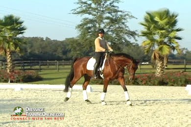Axel Steiner training Chrissa Hoffman by Dressage Today Online