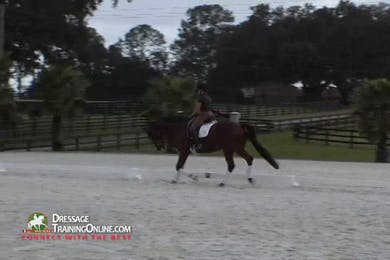 Chrissa Hoffman Warm Up, Lateral Work, and Canter Work With the Young Horse by Dressage Today Online