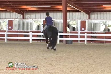 Debbie McDonald - Balance and the Young Horse by Dressage Today Online