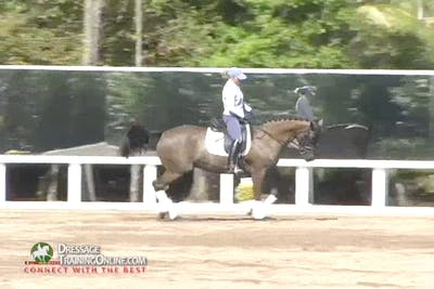 Instant Access to Nancy Later - 6 Year Old by Dressage Today Online, powered by Intelivideo