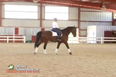 Debbie McDonald - Feel and Contact by Dressage Today Online