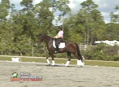 Instant Access to Courtney King-Dye - Consistency in Contact by Dressage Today Online, powered by Intelivideo