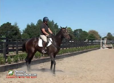 Instant Access to Jody Hartstone - OTTB 4 - Trot and Canter Work by Dressage Today Online, powered by Intelivideo