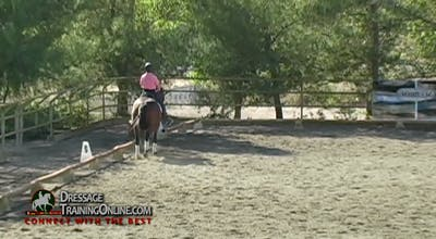 08/08/13 - Dr. Dieter Schule - Developing Horses by Dressage Today Online