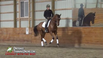 08/22/13 - Dr. Ulf Moller - Bending by Dressage Today Online