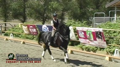 Dr. Dieter Schule - Developing Horse, Prix St. Georges Test, Day 1, Intro by Dressage Today Online