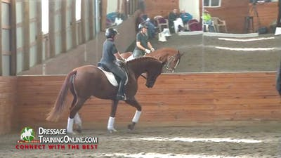 Instant Access to 09/18/13 - Dr. Ulf Moller - Three Year Old by Dressage Today Online, powered by Intelivideo