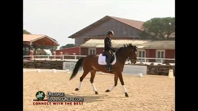 11/23/13 - Jan Bemelmans - Calmness and Canter Departs by Dressage Today Online