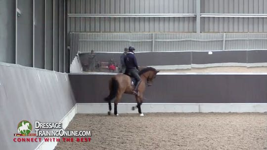 Instant Access to 01/04/14 - Gareth Hughes - Development of the Trot by Dressage Today Online, powered by Intelivideo