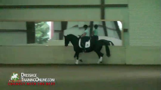 Instant Access to 01/04/14 - Debbie McDonald - Ground Covering Strides by Dressage Today Online, powered by Intelivideo