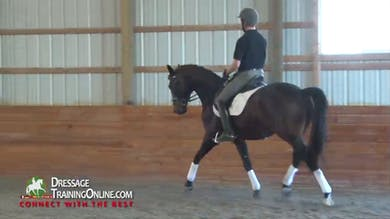 1/10/14 - Dr. Ulf Moller - Creating Activity From Behind by Dressage Today Online