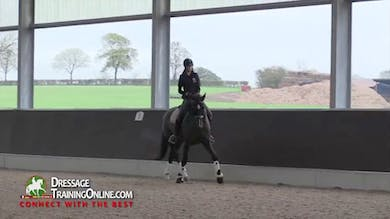 Gareth Hughes - 5 Year Old by Dressage Today Online