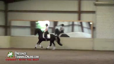 02/13/14 - Debbie McDonald - Half Pass and Schooling Pirouettes by Dressage Today Online