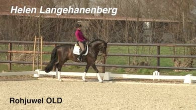 Helen Langehanenberg - Relaxation by Dressage Today Online