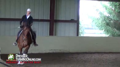 Debbie McDonald - Working Through Unsteadiness by Dressage Today Online