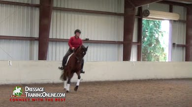 Debbie McDonald - Creating Connection by Dressage Today Online