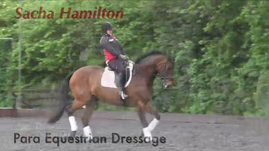 Sacha Hamilton - Para Equestrian Riding by Dressage Today Online