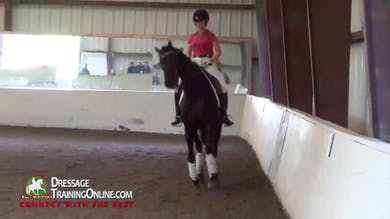 Debbie McDonald - Steady in the Hand by Dressage Today Online