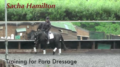 Sacha Hamilton - Training for Para Dressage by Dressage Today Online