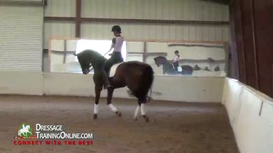 Debbie McDonald - Building the Passage by Dressage Today Online