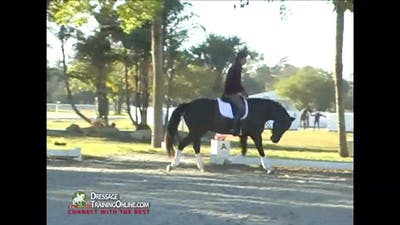 Christoph Hess - Driving Aids INTRO by Dressage Today Online