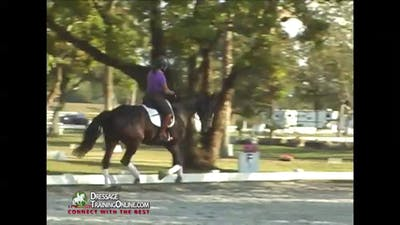 Instant Access to 08/21/14 - Christoph Hess - Accepting the Driving Leg by Dressage Today Online, powered by Intelivideo