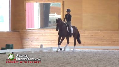 10/30/14 - Nicholas Fyffe - Walk Canter Walk Transitions and Flying Changes by Dressage Today Online