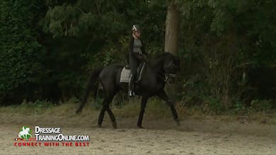 01/01/15 - Laurens van Lieren - Preparation by Dressage Today Online