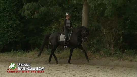 Instant Access to 01/01/15 - Laurens van Lieren - Preparation by Dressage Today Online, powered by Intelivideo