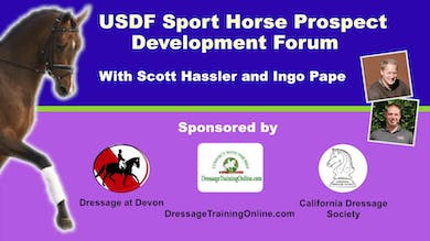 USDF Sport-Horse Prospect Development Forum - 3 Year Old Stallion by Dressage Today Online