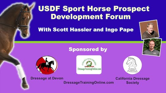 Instant Access to 01/01/15 - USDF Sport Horse Prostpect Development Forum - Three Year Old Stallion by Dressage Today Online, powered by Intelivideo