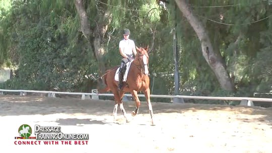 Instant Access to 01/08/15 - Hilda Gurney - Little Bit Done Well by Dressage Today Online, powered by Intelivideo